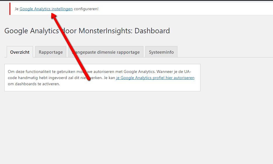 MonsterInsights - Configureren